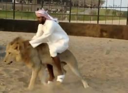 ride a lion