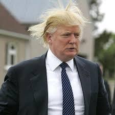 Trumpety fucking Trump